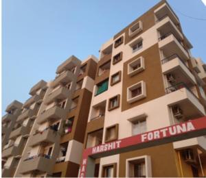 Singhania-Buildcon-fortuna